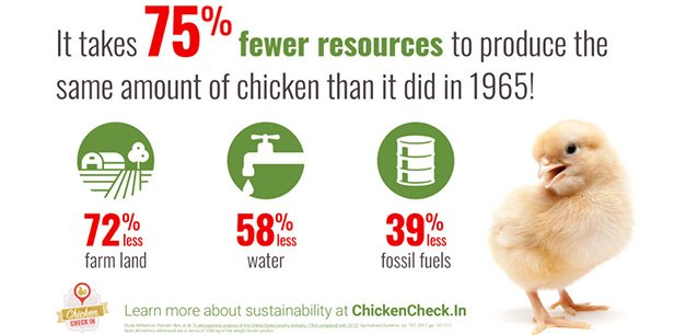 It takes 75% fewer resources to produce the same amount of chicken than it did in 1965! Learn more about chicken sustainability